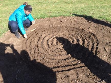planting flax 3