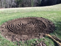 planting flax 4